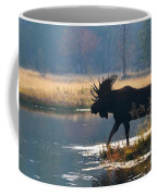 Bullwinkle Coffee Mug