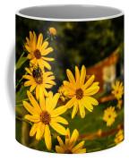 Bumble Bee On A Western Sunflower Coffee Mug