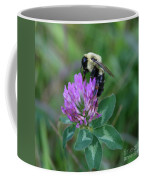 Bumble Bee On Red Clover  Coffee Mug