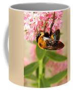 Bumblebee Clinging To Sedum Coffee Mug