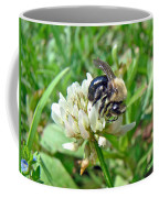 Bumblebee On White Clover Coffee Mug