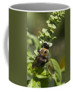 Bumblebees And Basil Coffee Mug