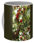 Bumper Crop - Cherries Coffee Mug