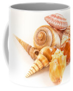 Bunch Of Shells Coffee Mug by Jean Noren