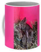 Bunnies In Pink Coffee Mug