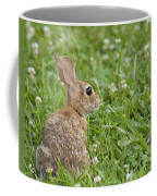 Bunny Rabbit In The Clover Coffee Mug