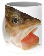 Burbot Lota Lota Head Isolated On White Coffee Mug