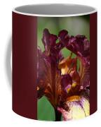 Burgundy Blossom Coffee Mug