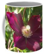 Burgundy Clematis Profile   # Coffee Mug