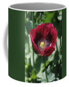 Burgundy Poppy Coffee Mug