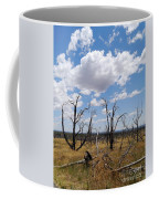 Burned Trees On Colorado Plateau Coffee Mug