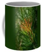 Burnished Pine Coffee Mug