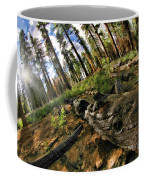 Burnt Tree In A New Forest. Coffee Mug
