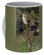 Burr Coffee Mug