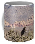 Burro Red Rock Coffee Mug