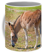 Burro Equus Asinus Coffee Mug