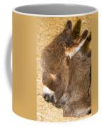 Burro Foal Coffee Mug