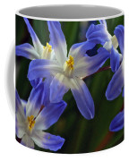 Burst Of Glory Coffee Mug
