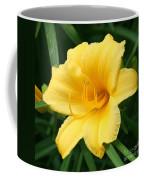 Bursting Lily  Coffee Mug