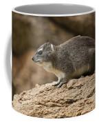 Bush Hyrax 2 Coffee Mug