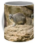 Bush Hyrax  Coffee Mug