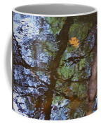 Second  Reflection In Bushkill Falls  Coffee Mug