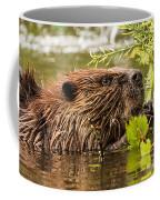 Busy As A Beaver Coffee Mug