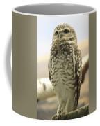 But Hoo Coffee Mug