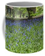 Bute Park Bluebells Coffee Mug