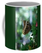 Buterfly 4 Coffee Mug