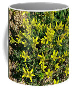 Buttercups In Cappadocia-turkey Coffee Mug
