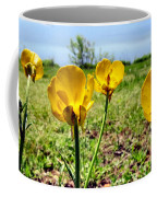 Buttercups Coffee Mug