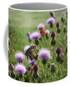 Butterflies And Bull Thistle Wildflowers Coffee Mug
