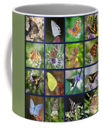 Butterflies Squares Collage Coffee Mug