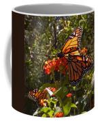 Butterflies Three Coffee Mug
