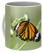Butterfly 009 Coffee Mug