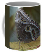 Butterfly 015 Coffee Mug
