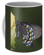Butterfly 016 Coffee Mug