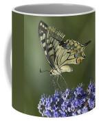 Butterfly 020 Coffee Mug
