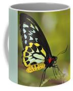 Butterfly 022 Coffee Mug