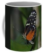 Butterfly 025 Coffee Mug