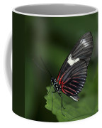 Butterfly 027 Coffee Mug