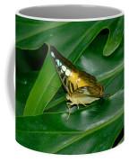 Butterfly 1 Coffee Mug