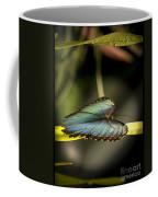 Butterfly 21 Coffee Mug