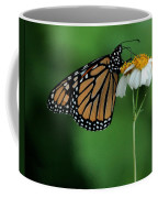 Butterfly 3 Coffee Mug