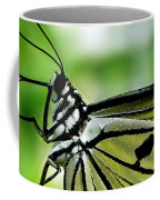 Butterfly 4 Coffee Mug