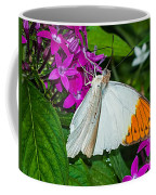 Butterfly 63 Coffee Mug