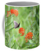 Butterfly A L'orange Coffee Mug