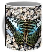 Butterfly Amongst Stones Coffee Mug