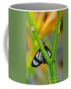 Butterfly An3597-13 Coffee Mug